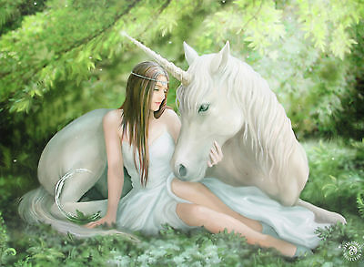 Fantasy Canvas (40x30)- Pure Heart by Anne Stokes-Framed-OZ Seller