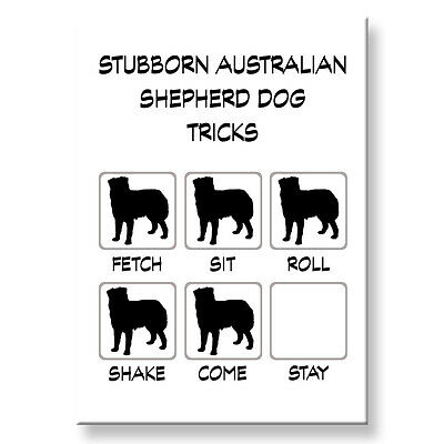 AUSTRALIAN SHEPHERD DOG Stubborn Tricks FRIDGE MAGNET Steel Case Funny