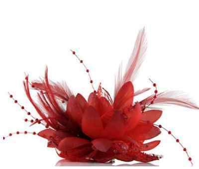 Red Flower Feather Fascinator Bridal Bead Corsage Hair Clips Hairband