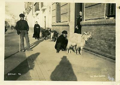 Real Photo  spain   1  6x4 inch 1920s-30s7