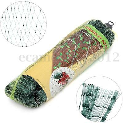 2x4m Anti Bird Netting Pond Green Net Protect Tree Crops Plant Fruit Garden Mesh