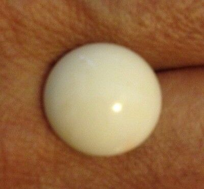 VINTAGE NATURAL WHITE CORAL 1 CABUCHON  15.75 Mm ROUND ITALY A++