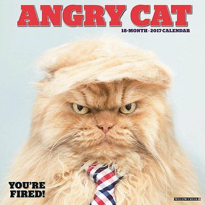 2017 Angry Cat Monthly Wall Calendar Garfi Troll Funny Comical