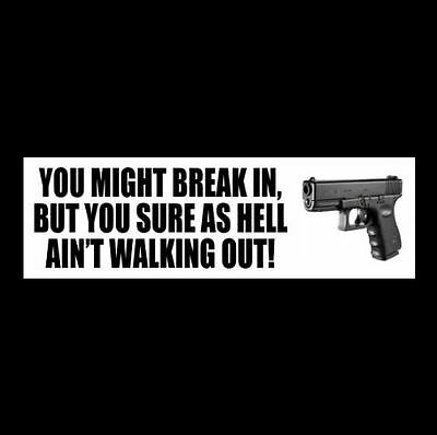 """Funny """"YOU SURE AS HELL AIN'T WALKING OUT"""" home security DECAL alarm GUN RIGHTS"""