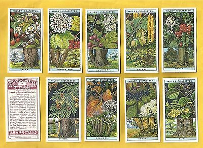 Wills cigarette cards - FLOWERING TREES AND SHRUBS - Mint in original packaging