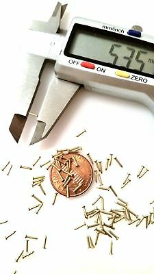 "500x 13/64"" (5mm) 0.8mm dia Tiny Nails Brads Solid Brass 20G Escutcheon pins FH"