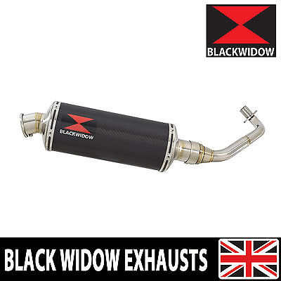 Piaggio Vespa GTV 300 4T 4V ie 2009-2016 Carbon Fibre End Can Silencer 300CS