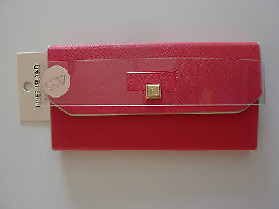 RIVER ISLAND Pink Glasses Case NWT