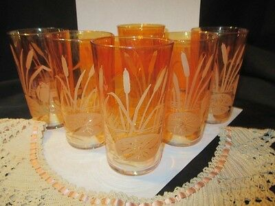 6 Halloween Orange Marigold Carnival Glass Tumblers Pond Lily Cattail Waterlily