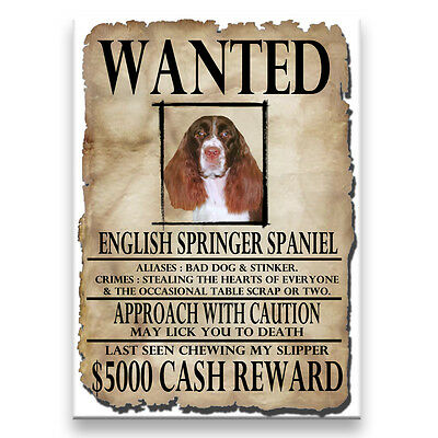 ENGLISH SPRINGER Wanted Poster FRIDGE MAGNET No 2
