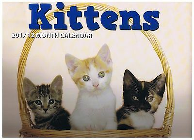 Cats - Kittens 2017 Wall Calendar 12 Months Planner Agenda New In Package