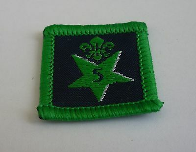Joining In Award #5 - Cubs/Scouts - Badge/Patch