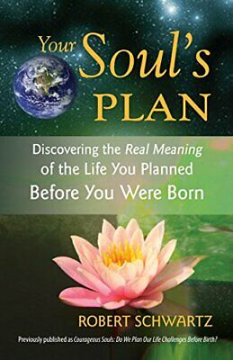 Your Soul's Plan: Discovering the Real Meaning ... by Schwartz, Robert Paperback