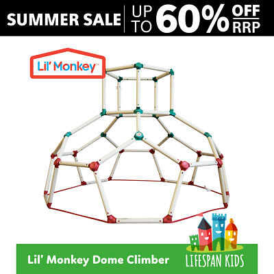 Lil Monkey Playground Jungle Gym Monkey Bar Climbing Frame Play Structure Dome