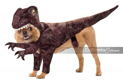 California Costumes Raptor Dinosaur Dog Pet Animal Halloween Costume PET20109