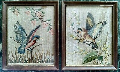 Pair of 2 Framed Vintage Antique Wool Needlepoint Blue Birds New York State Bird