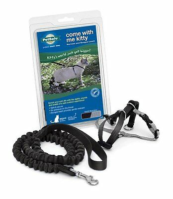 Petsafe Come With Me Kitty Harness & Bungee Leash Medium Black Pet Perfect New