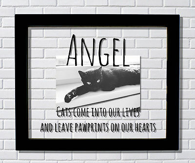 Custom Cat Frame - Cats come into our lives and leave pawprints on our hearts
