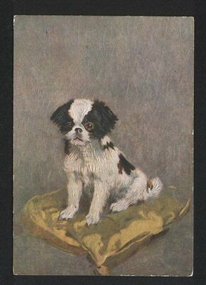 Japanese dog   tobacco cigarette card postcard dogs 1930's #053