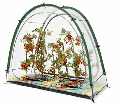 Culti Cave Modular Greenhouse System