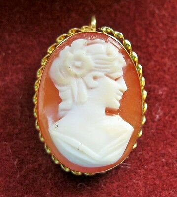 14K Gold Carved Cameo Shell Pin/pendant