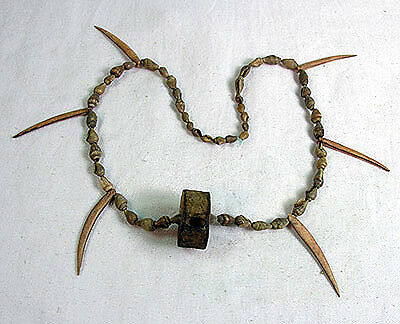 PRE COLUMBIAN SHELL & SPINE Necklace - Florida East Coast - 500 BC.. mb-5533