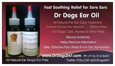 Ear Infection & Ear Mite Treatment for Cats, Dogs& All Animals