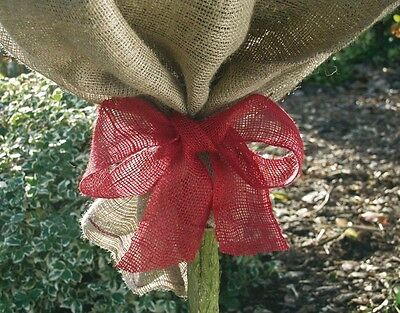jute-winding Band 141350 Red 300 X 7,5 cm Winter Protection Plant Protection