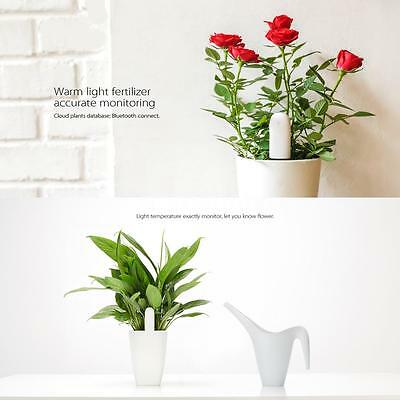 Xiaomi 4in1 Plants Tester Light Temperature Monitoring + Bluetooth Hot Sale W1W5