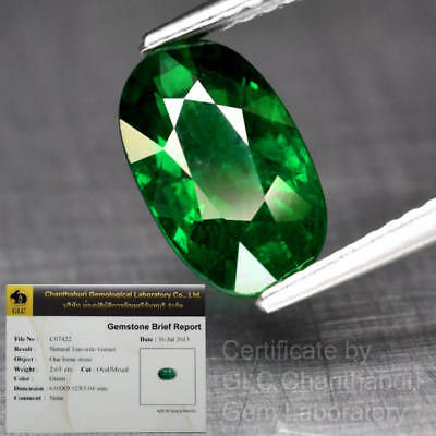 Big Rare! 2.63ct 10x6mm Oval Natural Green Tsavorite Garnet *Free GLC Certified