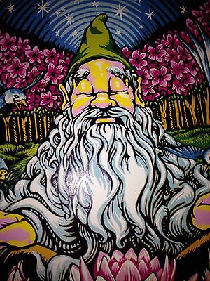 AJ Masthay WideSpread Panic poster Charlottesville 2016 print signed numbered