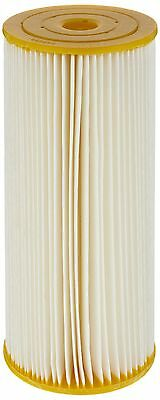 Pentek ECP50-BB Pleated Cellulose Polyester Filter Cartridge 9-3/4-Inch x... New