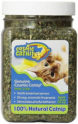 OurPets North American Grown Catnip Jar 1-1/4-Ounce 1.25 Ounce New
