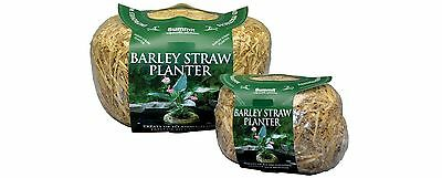Summit Chemical Co 1140 Clear-Water Barley Straw Planter Treats upto 4000... New
