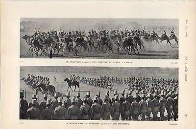 1914 Wwi ~ Egyptian Cavalry & Infantry March Past Camel Corps Reining Up