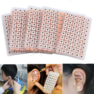New 600Pcs Ear Press Seeds Acupuncture Vaccaria Plaster Bean Massage Disposable