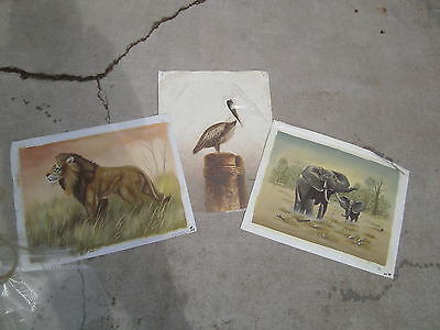 Oil painting on canvas lot of 3 animal