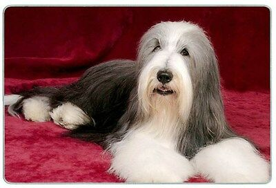Bearded Collie Cutting Board