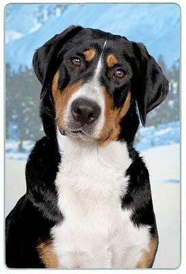 Greater Swiss Mountain Dog Cutting Board