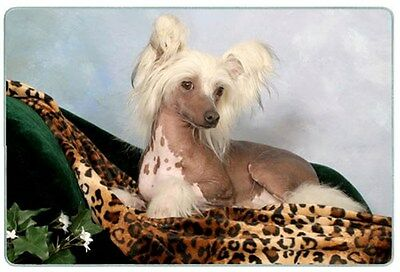 Chinese Crested Cutting Board