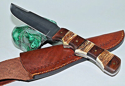 "9.5"" Handmade Skinner Stainless Steel Blade Stag & Wood Handle Hunting Knife 019"