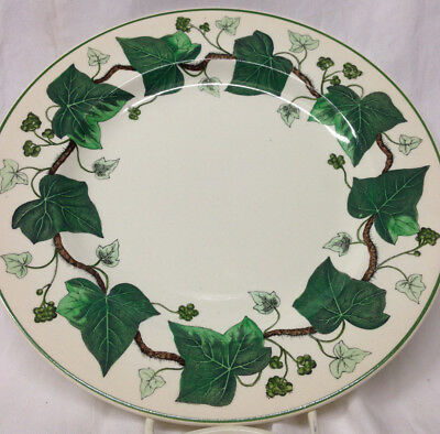 """Wedgwood Napoleon Ivy Dinner Plate 10 1/2"""" Green Ivy Leaves Queen's Ware Rim1.5"""""""