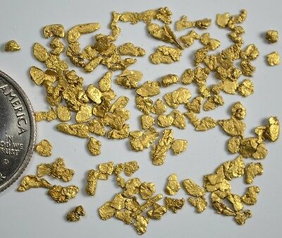Alaskan Yukon BC  Gold Nuggets  12-10 Mesh .1/10 Troy Oz  3.1 Grams or  2 DWT