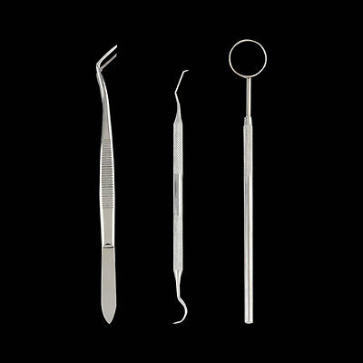 3Pcs Handle Stainless Steel Dental Tool Pick Scaler Set Teeth Cleaning Tooth P