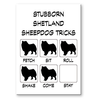 SHETLAND SHEEPDOG Stubborn Tricks FRIDGE MAGNET New DOG Sheltie