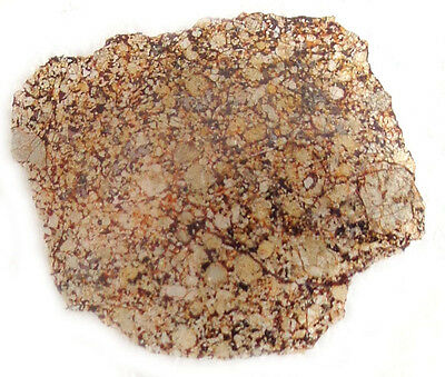 NEWEST! Kharabali H5 Chondrite METEORITE, Russia, Thin Section fine quality #1