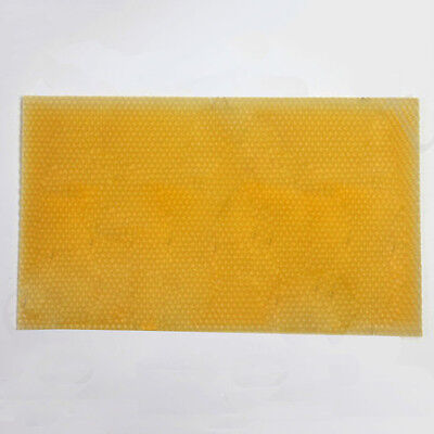 National Beehive Brood Box Wired Wax Foundation Sheet Beekeeping Cell Cup Pad