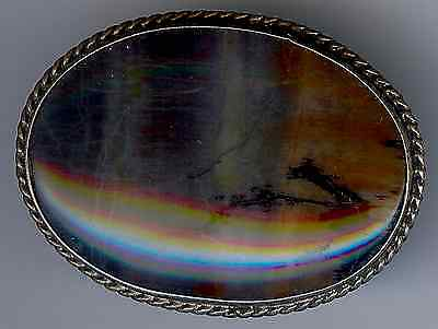 Vintage Navajo Indian Silver Scenic Petrified Wood Pin
