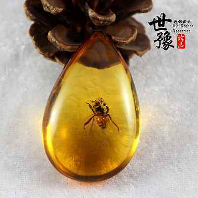 Beautiful Natural AMBER FOSSIL Bee Plant Insect Stone Pendant Necklace