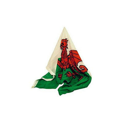 Wales Welsh Flag Pole Fly Rugby Football National Country Size 3ft x 2ft